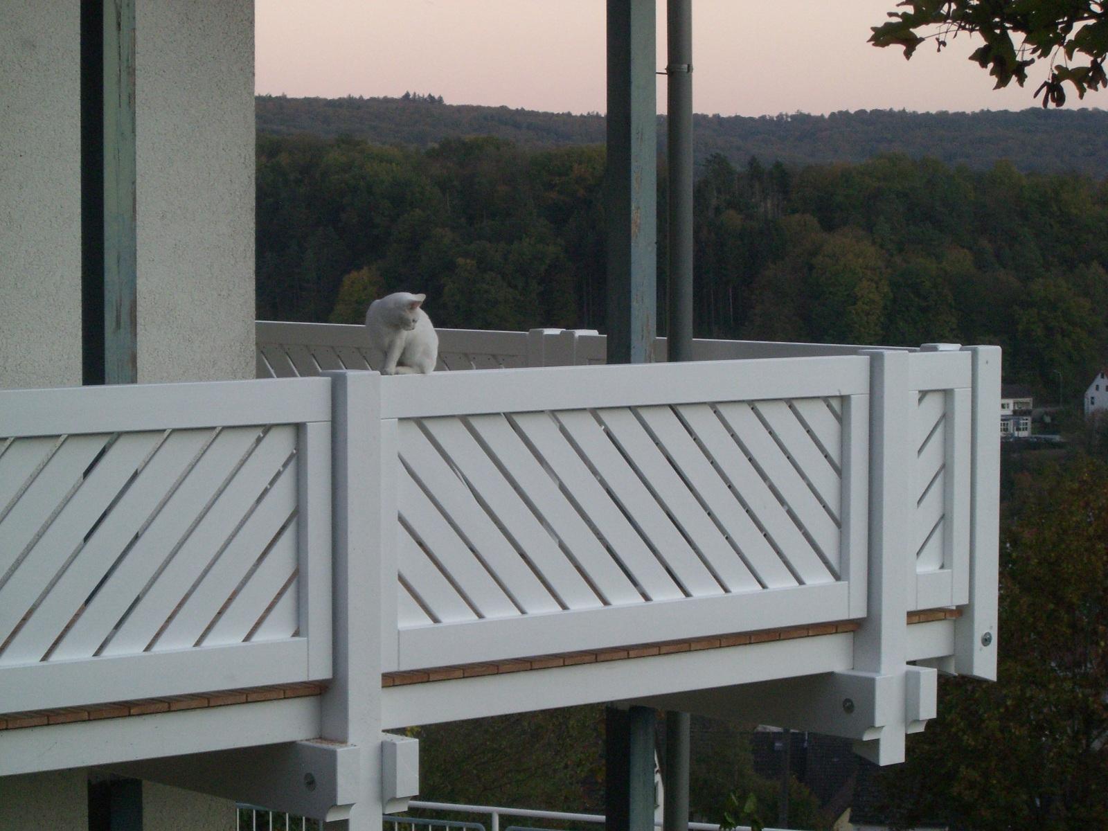 Terrasse Balkon Carport Zimmerei Hombach